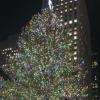 クリスマス、年末年始はマンハッタン、5番街、タイムズスクエア なんて